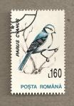 Sellos de Europa - Rumania -  Parus cyanus