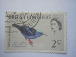Stamps Honduras -  BRITISH HONDURAS