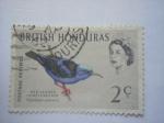 Sellos de America - Honduras -  BRITISH HONDURAS