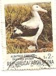 Stamps : America : Argentina :  Albatros Errante
