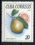 Sellos de America - Cuba -  Frutos