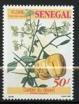 Stamps Europe - Serbia -  Frutos