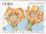 Stamps Cuba -  Flores de cactus -Opuntia dillenii