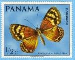 Sellos de America - Panamá -  Apodemia Albinus Feld