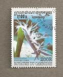 Stamps Asia - Cambodia -  Flabellina  affinis