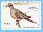 Stamps Cuba -  Fauna Silvestre - Rabiche