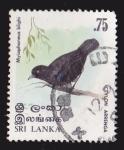Sellos del Mundo : Asia : Sri_Lanka : SRI LANKA - AVES