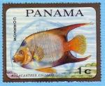 Sellos de America - Panamá -  Holacanthus Ciliaris