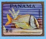 Stamps : America : Panama :  Anisotremus Virginicus