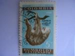 Sellos de America - Colombia -  ANAU - Perezoso - HUMOLDT - Centenario  1769-1859