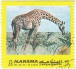 Sellos de Asia - Bahrein -  jirafa