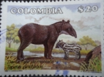 Stamps of the world : Colombia :  DANTA , Tapir de Montaña. (Autor:C.Landazabal)