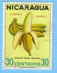 Stamps Nicaragua -  Banano