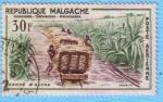 Stamps : Africa : Madagascar :  Caña de Azúcar