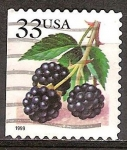 Sellos del Mundo : America : Estados_Unidos : Bayas de Frutas: Moras.