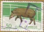 Sellos de America - Cuba -  TAPIR