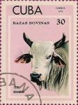 Stamps Cuba -  Razas Bovinas. Cebú Brahman.