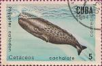 Stamps Cuba -  Mamíferos Marinos. Cetáceos - cachalote, Physeter catodon.