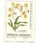 Sellos de America - Argentina -  Flor de Patito