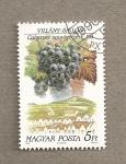 Sellos de Europa - Hungría -  Variedades uva para vinificación