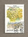Stamps Hungary -  Variedades uva para vinificación