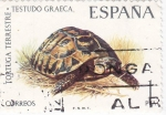 Stamps Spain -  Tortuga terrestre       (E)