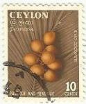 Stamps : Asia : Sri_Lanka :  COCOS