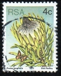 Stamps Russia -  Protea