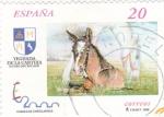 Sellos de Europa - España -  Caballos Cartujanos  3608            (F)