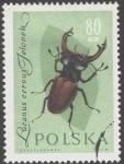 Sellos de Europa - Polonia -  Protección de insectos útiles,