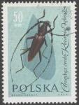 Sellos de Europa - Polonia -  Protecci�n de insectos �tiles,
