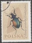 Stamps Poland -  Protección de insectos útiles,