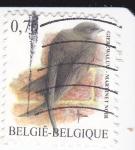Stamps Belgium -  Martinet Noir