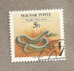 Sellos de Europa - Hungría -  Natrix natrix