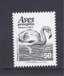 Stamps Chile -  aves protegidas