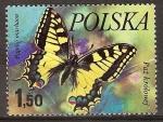 Sellos de Europa - Polonia -  Mariposas cola de golondrina.