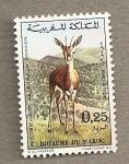 Sellos de Africa - Marruecos -  Gazela