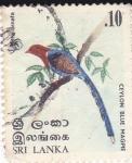 Sellos de Asia - Sri Lanka -  Mitta Cornata