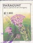 Sellos de America - Paraguay -  Flores silvestres de Paraguay