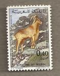 Stamps Morocco -  Muflón