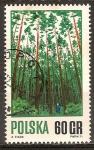 Sellos de Europa - Polonia -  Manejo forestal adecuado.
