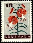 Stamps Bulgaria -  Lilium tigrinum.