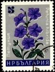 Sellos de Europa - Bulgaria -  Petunia híbrida.
