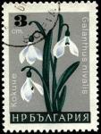Stamps Bulgaria -  Galanthus nivalis.