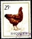Stamps : Europe : Albania :  Aves domésticas. Gallina.