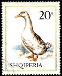 Stamps Albania -  Aves domésticas. Ganso.