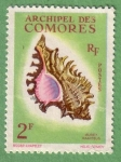 Sellos del Mundo : Africa : Comores : Murex Ramosus