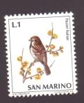 Stamps of the world : San Marino :  gorrión italiano