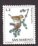 Sellos de Europa - San Marino -  reyezuelo listado