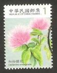 Stamps : Asia : Taiwan :  3228 - flor calliandra emarginata